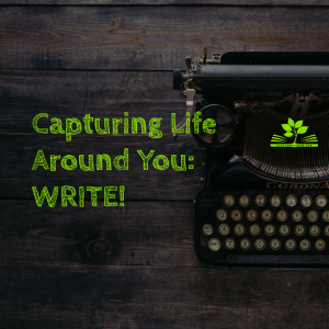 blog - capturing life 2 write